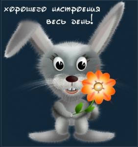 Мультфильмы про зайчиков